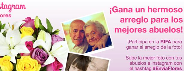 Concurso Enviaflores: gana un arreglo floral para tus abuelos