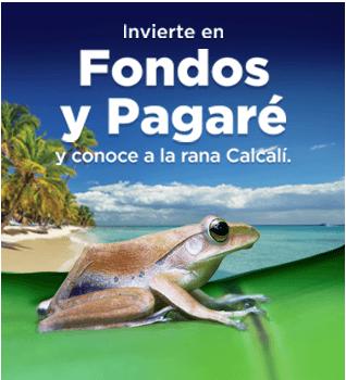 Gana con Banorte un viaje doble a Costa Rica o a Punta Cana y conoce a la Rana Calcalí