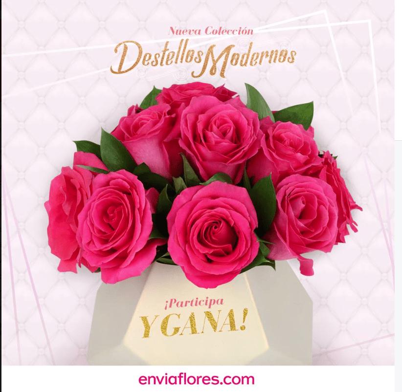 Gana un arreglo floral de la Nueva Colección Destellos Modernos cortesía de Enviaflores