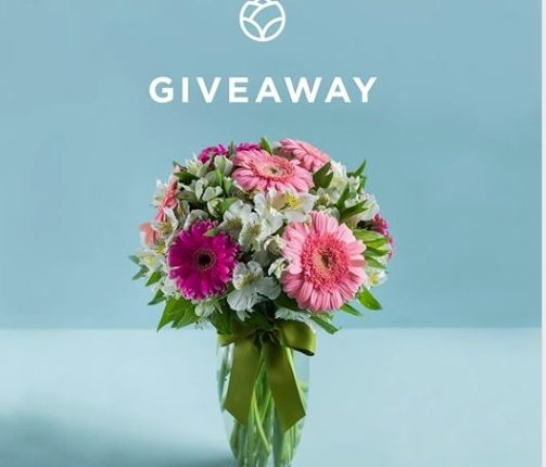 Giveaway Mándame Flores de Enviaflores: Gana un Arreglo de 10 Gerberas Rosas