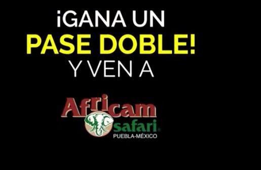 Gánate un pase cuádruple para Africam Safari