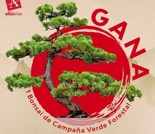 Gánate un bonsai en el concurso del día de las Madres de Plaza Altabrisa