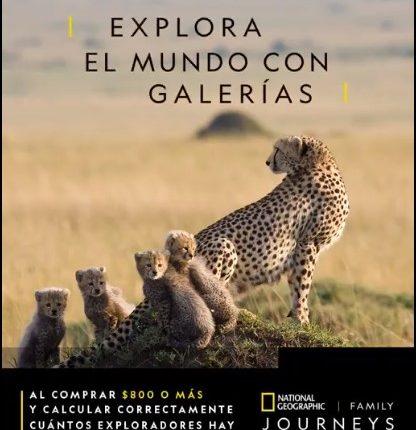 Concurso Galerías y National Geographic Journeys: Gana un viaje a Tanzania, Sudáfrica o Islandia