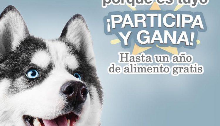 Concurso Fulltrust: Gana hasta un año de comida gratis para tu perro