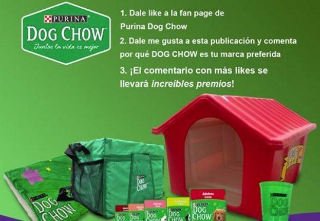 Concurso Dog Chow y Calimax: Gana un kit para tu perro