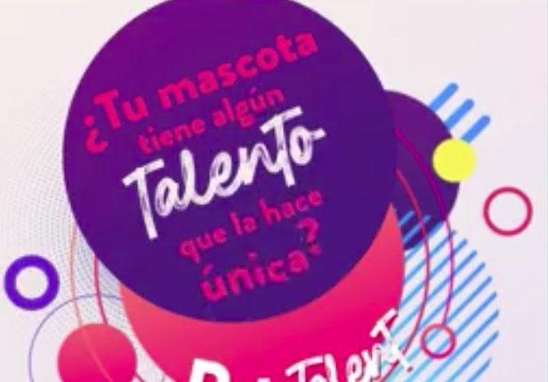 Gana un vale de $500 para Petco en el concurso de Sania