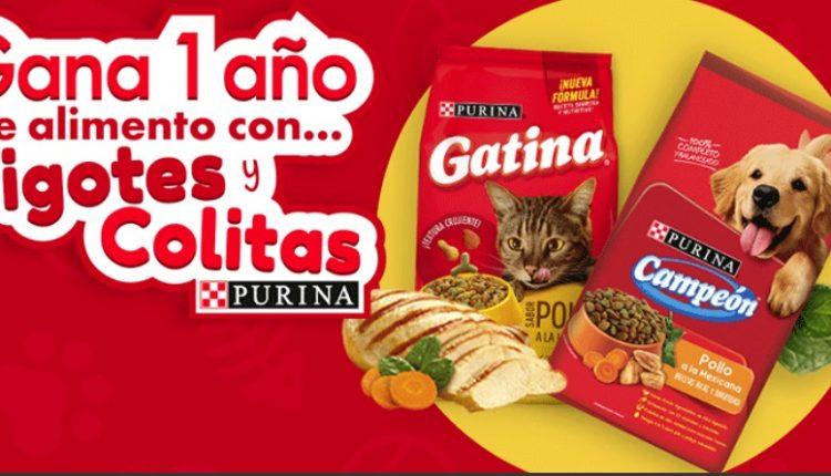 Promoción Purina Campeón y Gatina Bigotes y Colitas: Gana 1 año de alimento para tu mascota