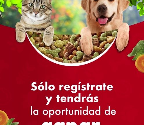Reto Purina Campeón y Gatina: Gana bultos de alimento para mascota todos los días