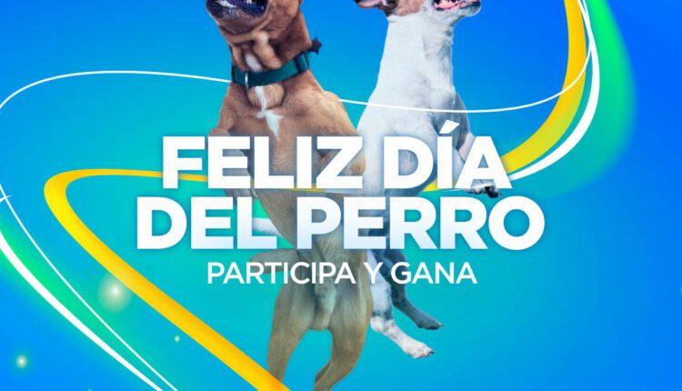 Concurso Día del Perro Dpstreet: Gánate un par de tenis
