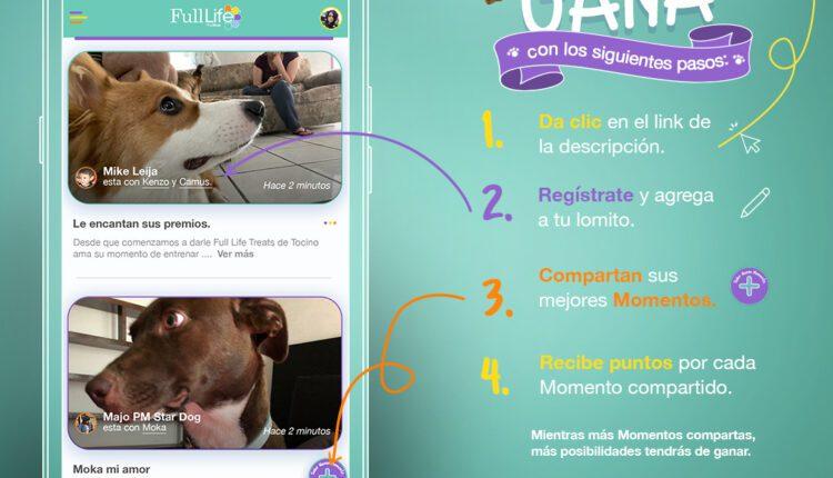 Concurso Full Life Decisiones 2021: Gana 1 año de alimento para tu mascota