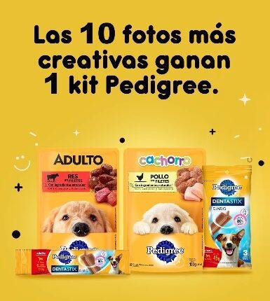 Gana 1 de 10 kits Pedigree para tu perro cortesía de Oxxo